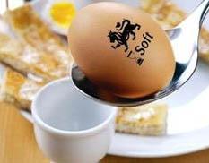 eggs vanko design