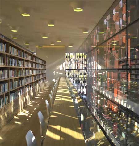 "Interno biblioteca ""libri terracotta"""
