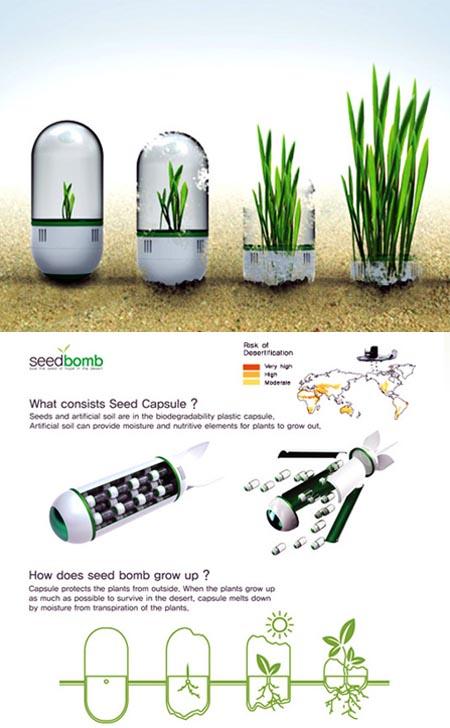 Seed Bomb, bombe di semi