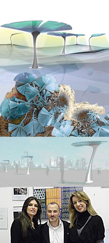 Edo: ensiline solari design biomimetico